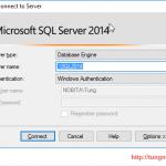 SQL Management Tool